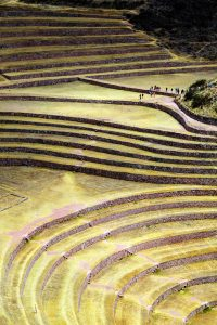 Between a Rock and a Hard Place: Democracy and Politics in the Andes after the Commodities Bonanza